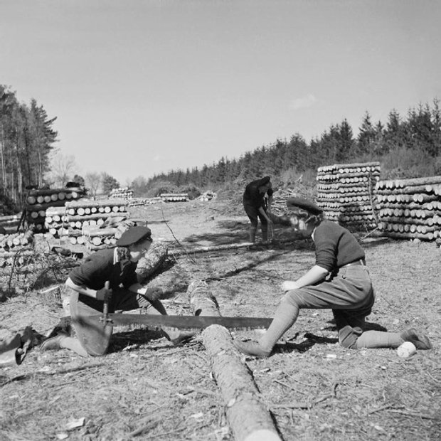 Two_Land_Army_girls_sawing_timber_into_lengths_for_pit_props_at_the_WLA_training_centre_at_Culford,_Suffolk_during_1942._D14101