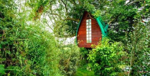 Tree-Sparrow-House-Airbnb-2-1020x610