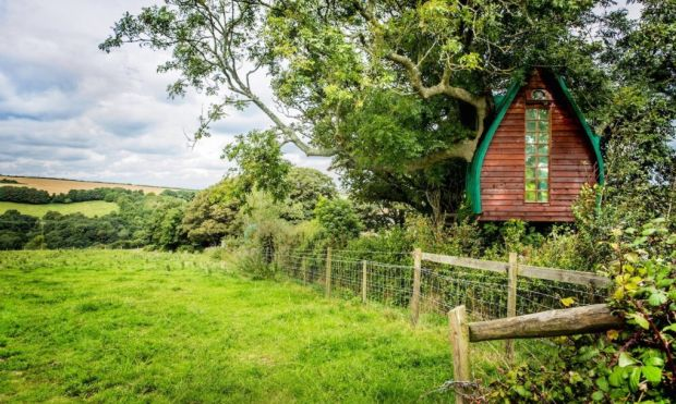 Tree-Sparrow-House-Airbnb-lead-1020x610