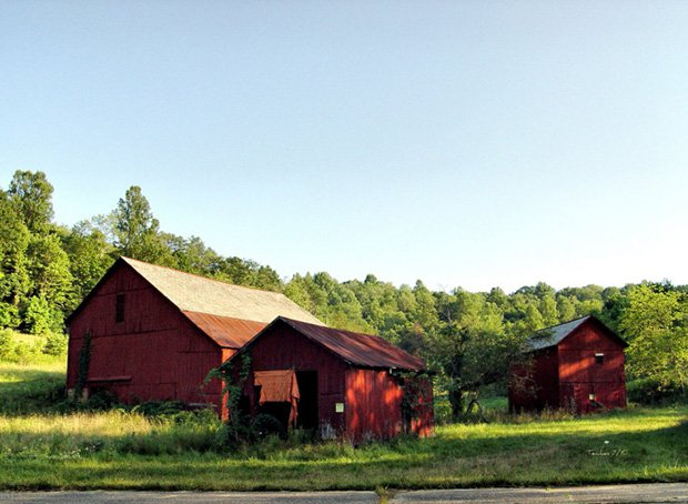 Group of barns along St. Rt. 145 just outside of Stafford (Monroe County), OHIO copy