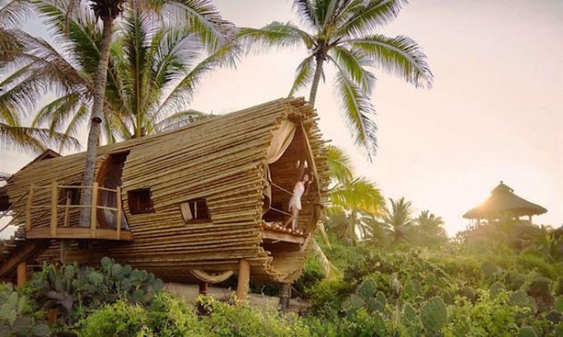 RESIZED Cylindrical TreeHouse SOLAR 01