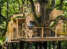 FEATURED IMAGE 02  Woodsman's Treehouse 00