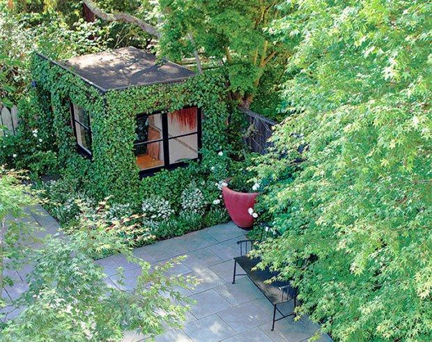 RESIZED Scott-Lewis-garden-2