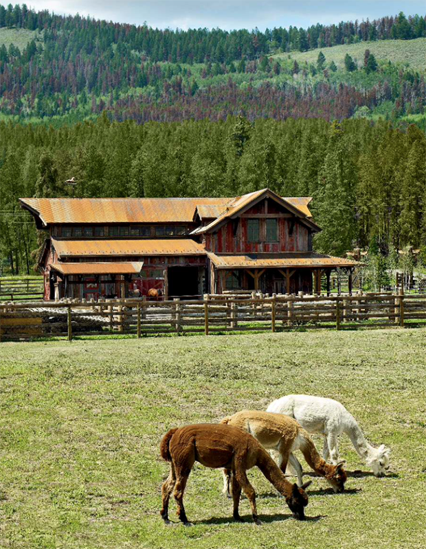 Lazy-J-Ranch (4)