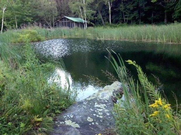 pondhouse3
