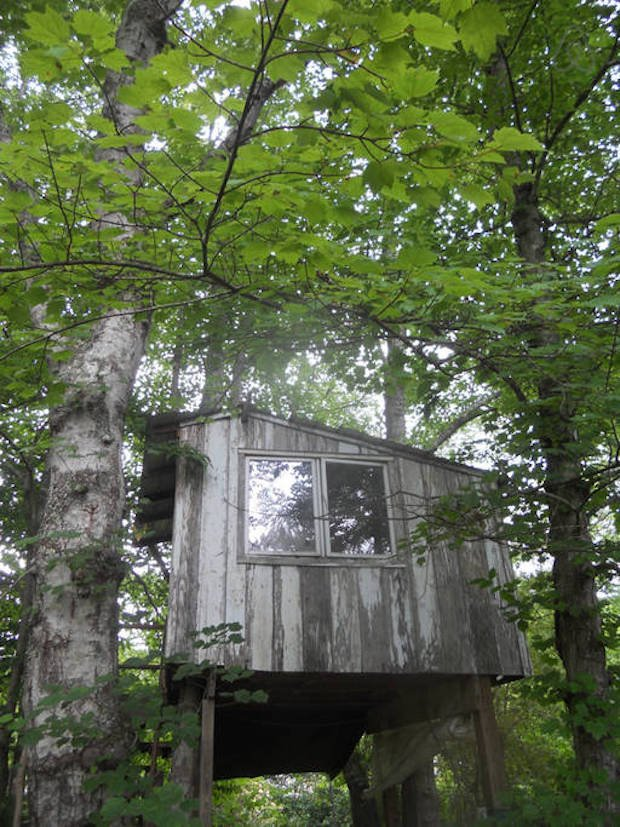 Rustic Treehouse For Your Asheville Adventures Cabin