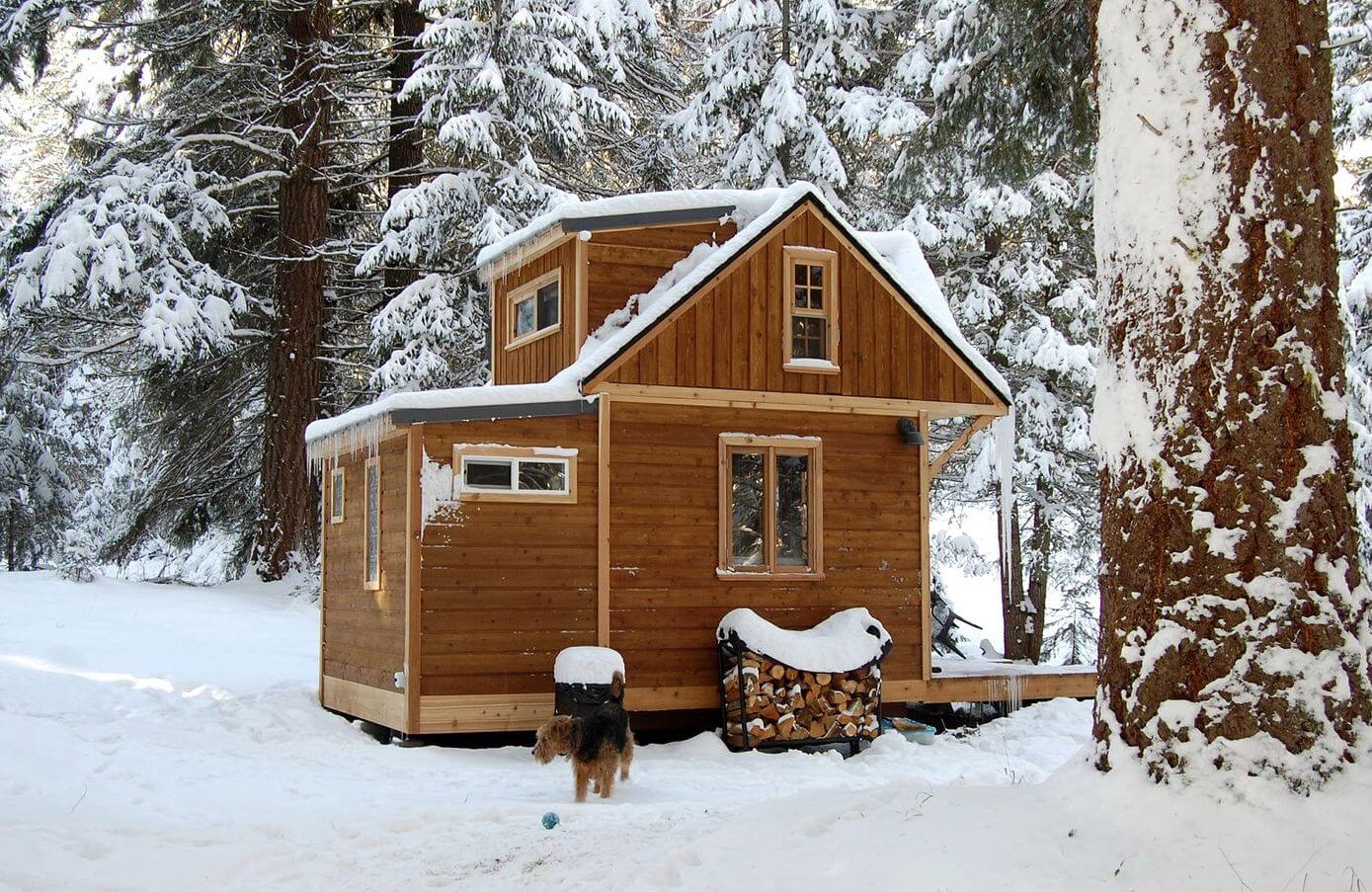 HUNT FOR MUSHROOMS IN THIS SCENIC GLAMPING SITE