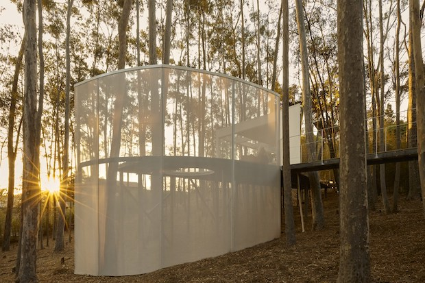 A SAFE SPACE IN THE FOREST!