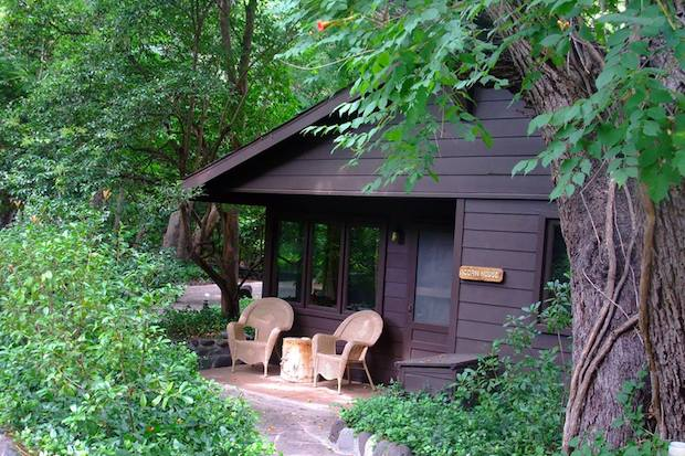 These Charming Cabins are All You Need for a Relaxing Retreat